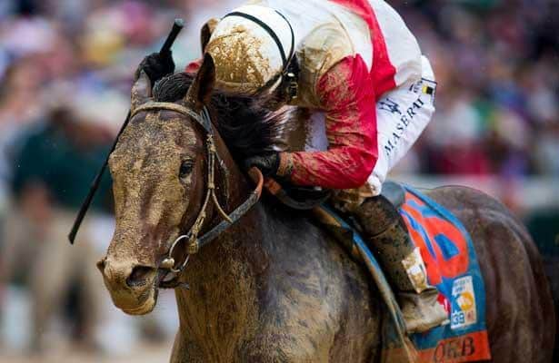 Belmont Stakes 2013 - ORB vs. the man in the white hat (D. Wayne)