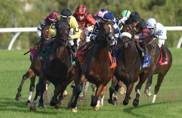 With meet halted, Woodbine handle falls by $50 million