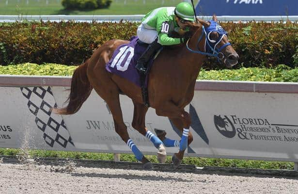 Analysis: Pedigrees point to 3 picks in Holy Bull Stakes