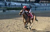 Paulassilverlining wins 2016 Distaff Handicap