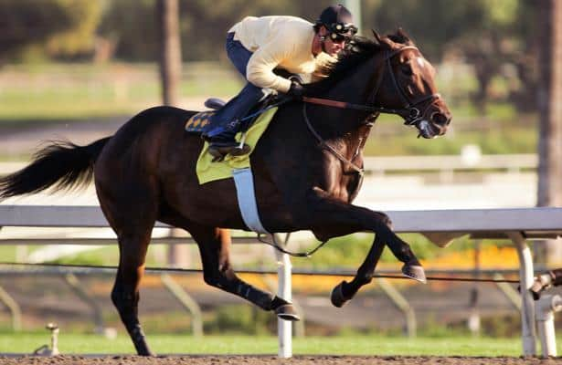 Ross: Pioneerof the Nile's legacy will build on after his death