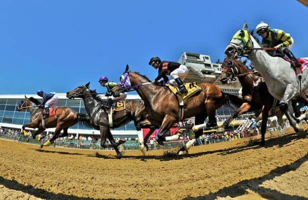 Free 2021 Preakness PPs now available