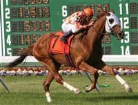 Presious Passion and Elvis Trujillo run away with the 2009 United Natons