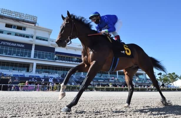 Derby Radar: Prevalence crushes the field in must-watch debut