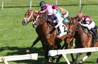 April 09, 2017, #2 Projected (GB) and Joel Rosario (Pink Cap) win the 7th race, Allowance $78,000 for older horses, out finishing #6 Divisidero, #5 Pleuven (FR), and #3 Kaigun at Keeneland Race Course. Lexington, Kentucky. (Photo by Candice Chavez/Eclipse Sportswire/Getty Images)