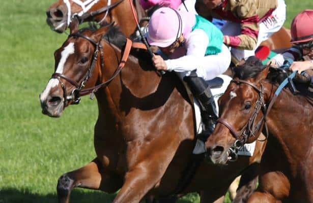 Weekend Watch: 'Springboard' to the Pegasus, Derby on tap