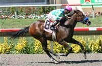 Pure Class breaks her maiden at Del Mar
