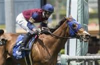Queen Blossom wins 2018 Santa Barbara
