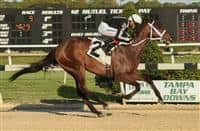 R Angel Katelyn wins 2017 Gasparilla
