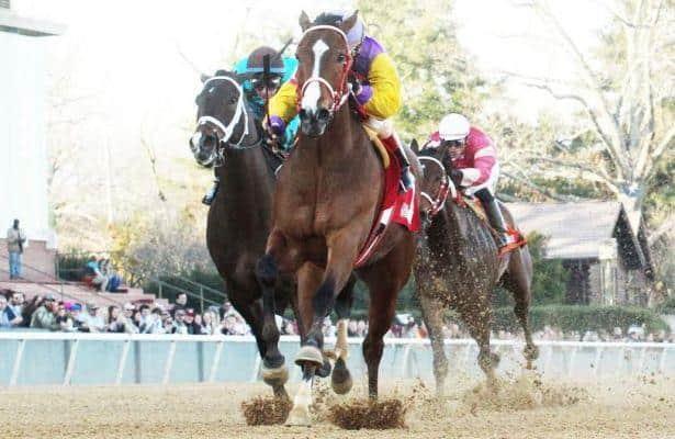 Racer Pulls Upset in Nodouble Breeders' Stakes