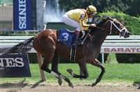 /horse/Rachels Valentina
