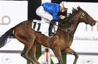 The Saeed Bin Suroor-trained Really Special bids for the Listed 1000 Guineas at Meydan Racecourse on Thursday February 8, 2017