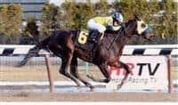 Rein King Win Photo 1/20/11