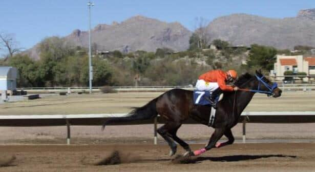 Rillito Park Sends Out Simulcast Signal for the First Time Ever