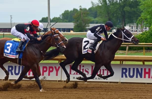 Pedigree Stars: Juvenile colts on Derby trail in Iroquois Stakes