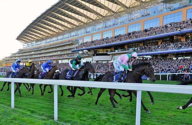 Ascot champions day betting websites list of states that allow sports betting