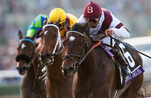 Watch: Royal Delta's foal, Delta's Royalty, wins on debut