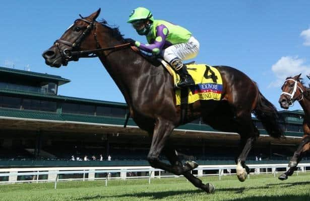 Horse betting odds meanings of flowers cottbus vs wolfsburg betting expert football