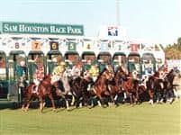 Sam Houston starting gate