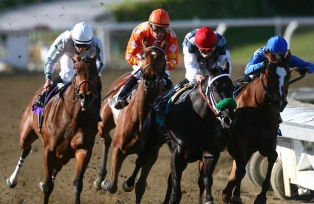 Total wagering on 2018 races increased for fourth consecutive year