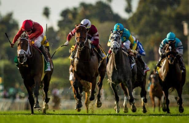 Jockeys' Guild 'extremely disappointed' in CHRB whip rule