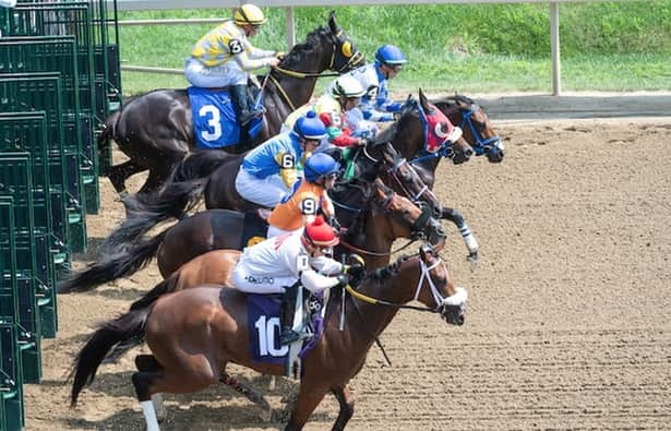 Prospect Watch: 6 exciting debuts at Saratoga, Del Mar
