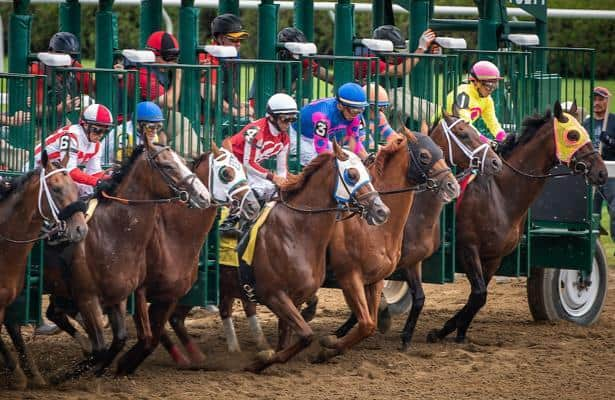 Who's Got The Action?  Handicapping tools and winning process