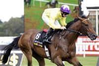 Sea the Stars and Mick Kinane run away with the Irish Champion Stakes - 2009