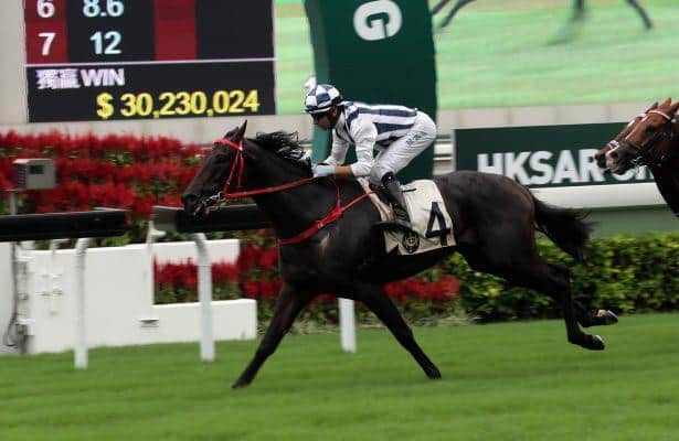 Seasons Bloom takes on salty group in Celebration Cup Handicap