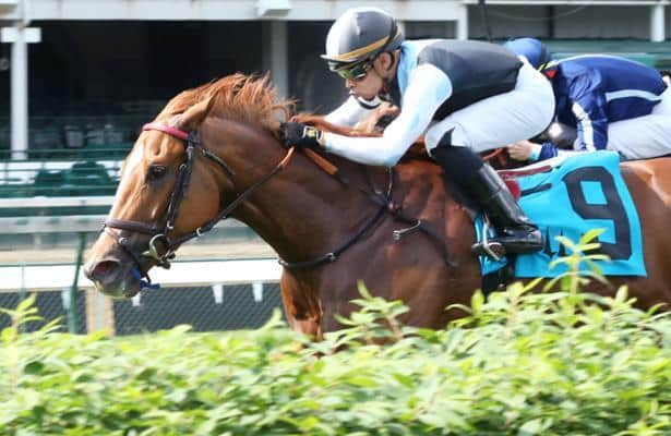 Sharing aces her latest test in Churchill's Tepin Stakes