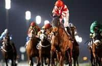 SHEIKHZAYEDROAD (David Simcock-Martin Harley) looks to repeat his G 3 Nad Al Sheba Trophy winning performance from last year (Photo Credit: Dubai Racing Club//Andrew Watkins)