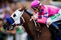 She's a Tiger with Gary Stevens defeats Fascinating with Mike Smith to win the GI Del Mar Debutante at Del Mar Race Course in Del Mar, CA on August 31, 2013. (Alex Evers/ Eclipse Sportswire)