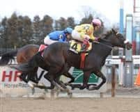 Singlet winning the 2012 Dearly Precious Stakes at Aqueduct.
