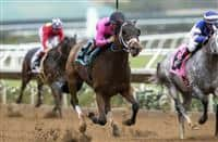 Solid Wager wins 2016 Cary Grant Stakes