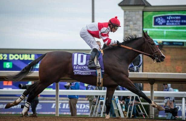 Keys to the 2016 Breeders' Cup Juvenile Fillies