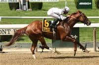 Speightster with Jose Lezcano win the 98th running of the Grade III Dwyer Stakes for 3-year olds, going 1 mile at Belmont Park. Trainer William Mott. Owner Winstar Farm. Sue Kawczynski/ESW/CSM