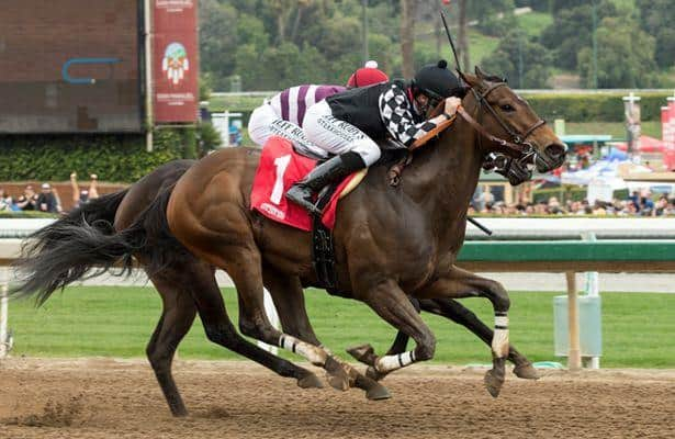 Spiced Perfection upsets Show It N Moe It in Evening Jewel Stakes