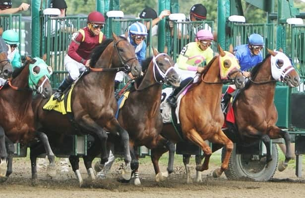 Who's Got Action Pod: Pedigree and pace handicapping