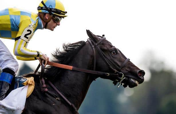 Casse: Strike Silver 'looks good' after he was vanned off Sunday