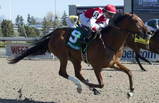 Summer Sunday veers wide and perseveres in Fury Stakes