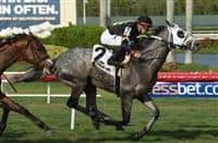 Susie Bee, with Tyler Gaffalione, won Gulfstream Park's $75,000 Christmas Past Stakes on May 27 by three-quarters of a length over Inside Out.