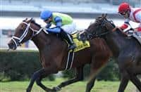 Swagger Jagger wins 2015 Pulpit Stakes
