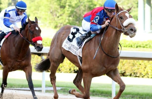 Head-to-Head: Handicapping the 2020 Blue Grass
