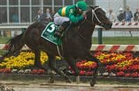Switzerland, #5, ridden by Ricardo Santana, Jr., wins the Maryland Sprint on Preakness Day at Pimlico Race Course on May 19, 2018 in Baltimore, Maryland (Photo by Sue Kawczynski/Eclipse Sportswire/Getty Images)