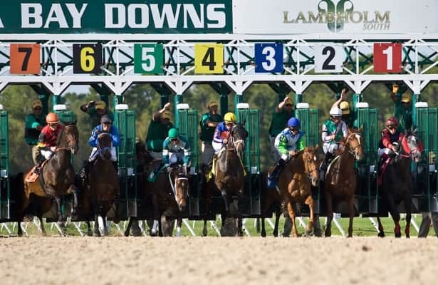 Analysis: Promise Keeper holds advantage in Tampa Bay Derby