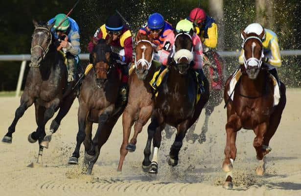 Tampa Bay Downs start sees handle increase, timing problems