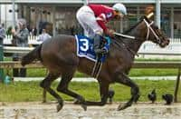 Tap Daddy #3, ridden by Ricardo Santana, Jr., wins the James W. Murphy Stakes during an undercard race on Preakness Day at Pimlico Race Course on May 19, 2018 in Baltimore, Maryland (Photo by Sue Kawczynski/Eclipse Sportswire/Getty Images)