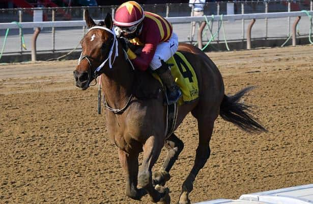 Bloodlines: Juvenile fillies showing Breeders' Cup potential