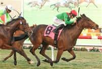 Three Hearts wins 2014 Red Carpet Handicap-G3