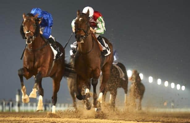 Dubai world cup night betting websites live online sports betting australia immigration